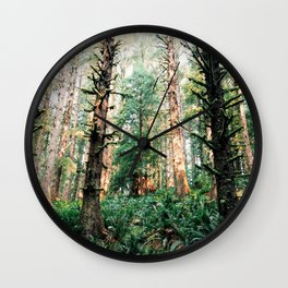 Olylpic peninsula forest Wall Clock