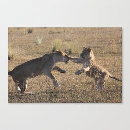 Broken Nose and Daughter Canvas Print