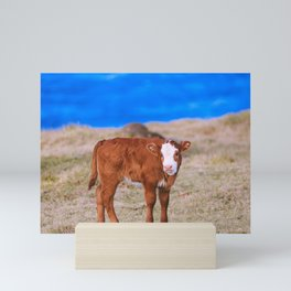 Calf on the seaside ranch, Maui, Hawaii | Nature Landscape Travel Photography | Wall Art Decor Pr Mini Art Print