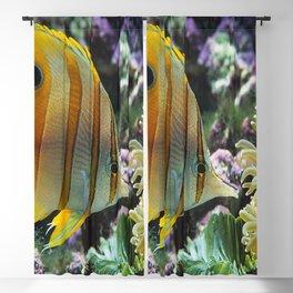 Yellow Longnose Butterfly Fish Blackout Curtain