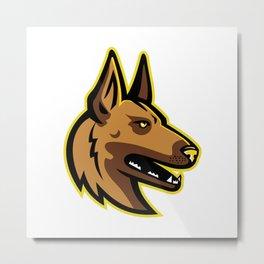 Belgian Malinois Dog Mascot Metal Print