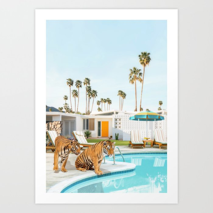 Tigers at the Pool Art Print