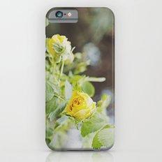 Rosa amarilla iPhone 6s Slim Case