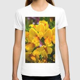 Scotch Broom T-shirt