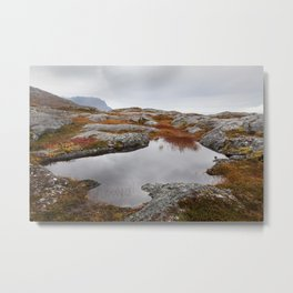 Fall colors in the north Metal Print