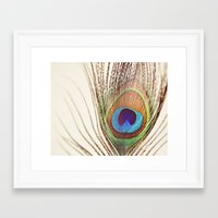 peacock Framed Art Prints featuring Peacock by Laura Ruth