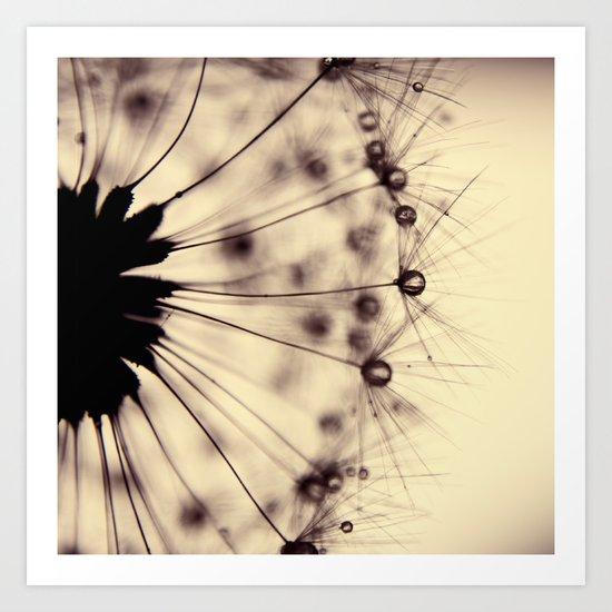 dandelion - droplets of mocha Art Print