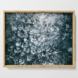 Winter Forest - Aerial Photography Serving Tray