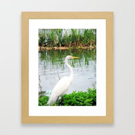 The Great White Egret:) (pointillism) | Large White Bird | Nature Photography Framed Art Print