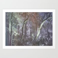 forest tale Art Print