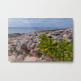 Coast Of The Caribbean Sea Metal Print