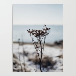 Winter Mood - Travel Nature Photography Poster
