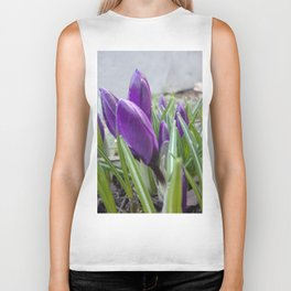 buds of crocuses Biker Tank