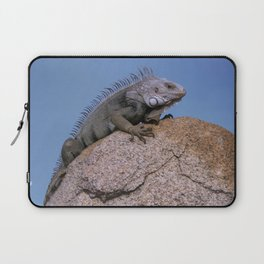 Iguana from Aruba Laptop Sleeve