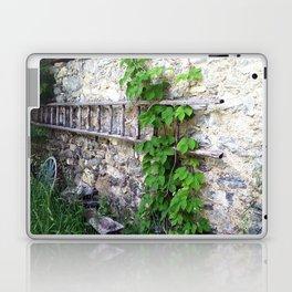 Swiss Barn and Ladder Laptop & iPad Skin