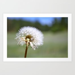 Don't Blow Away Art Print