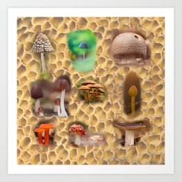 Mushrooms of different colors and shapes Art Print