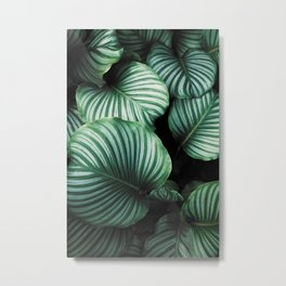 Tropical Jungle Leaves Metal Print