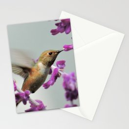 Slipping in for Another Sip Stationery Cards