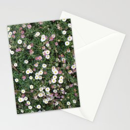 Cornwall Flower Gardens Photo 1772 Stationery Cards