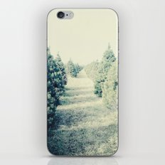 tree farm iPhone & iPod Skin