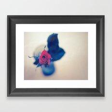 Rose In A Dream ~ flowers  Framed Art Print