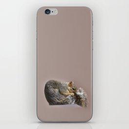 Shy squirrel iPhone Skin