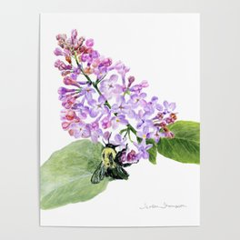 Lilac Love by Teresa Thompson Poster