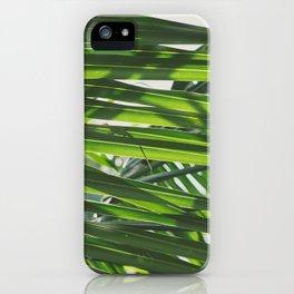 Gecko iPhone Case