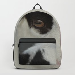 The Baby Goat Backpack