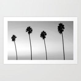 Black and White San Diego Palms - California Art Print