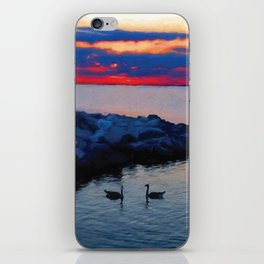 Two Geese iPhone Skin