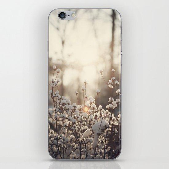 Northern Cotton iPhone & iPod Skin