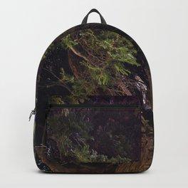 Beautiful Trees / 8 Backpack