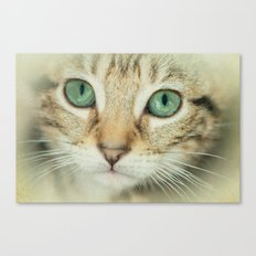 FELINE BEAUTY Canvas Print