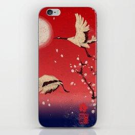 Durumi iPhone Skin