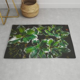closeup green leaves plant garden texture background Rug