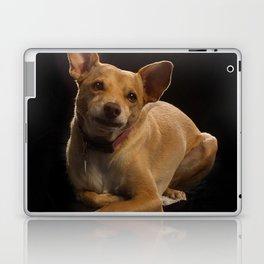 Dog Portrait Laptop & iPad Skin