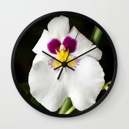 Pansy Orchid Wall Clock
