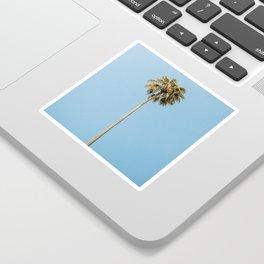 Palm Photography Sticker
