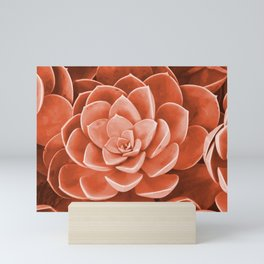 Red Succulenta Flower Mini Art Print