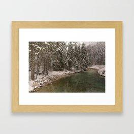 Picturesque Triglavska Bistrica River Framed Art Print