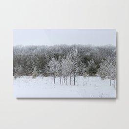 Beautiful Ice Storm Metal Print
