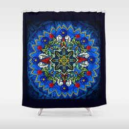 Lighted Rose Window Collage Shower Curtain