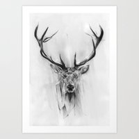 deer Art Prints featuring Red Deer by Alexis Marcou