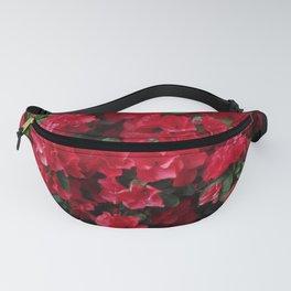 Red Azalea Blooms Fanny Pack