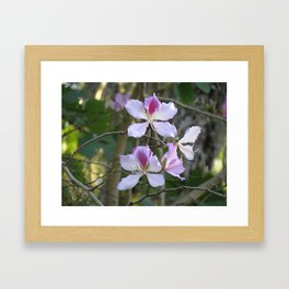 Orchid flower tree Framed Art Print