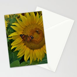 A Thirsty Butterfly Stationery Cards