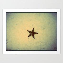 star fish 3 Art Print