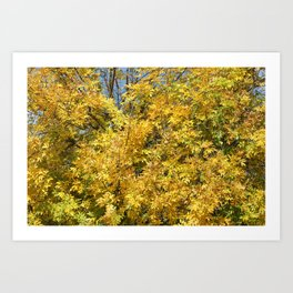 Yellow Tree Art Print